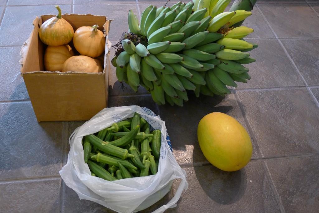 June Harvest